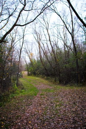 elm-creek-park-12-of-20