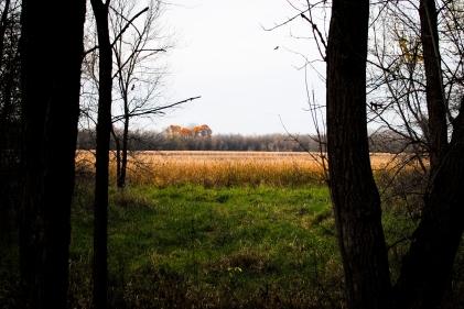 elm-creek-park-9-of-20